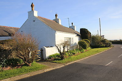 3 Bed Anglesey Holiday cottage Pet friendly  Slp 6/7  short breaks
