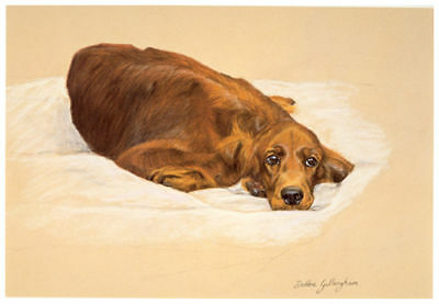 "IRISH RED SETTER GUNDOG DOG FINE ART LIMITED EDITION PRINT - ""Sulking"""
