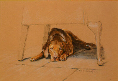 "HUNGARIAN VIZSLA GUNDOG DOG FINE ART LIMITED EDITION PRINT - ""His Masters Chair"""
