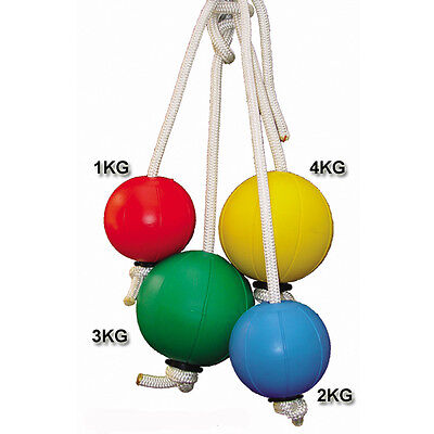 Cyclone Medicine Ball Workout Fitness Exercise Rope Strength Abs Core 1-4kg Set