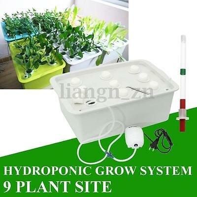 9 Plant Site Watering Hydroponic Indoor Grow Kit System Bubble Tub 41x27x14cm