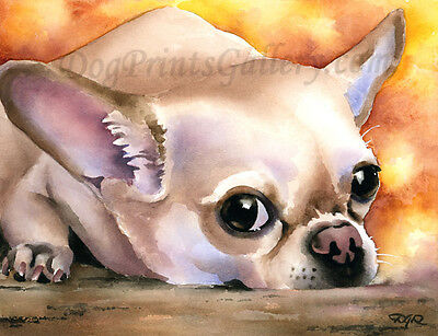 """""""Chihuahua"""" Watercolor Dog ART Print Signed by Artist DJR"""