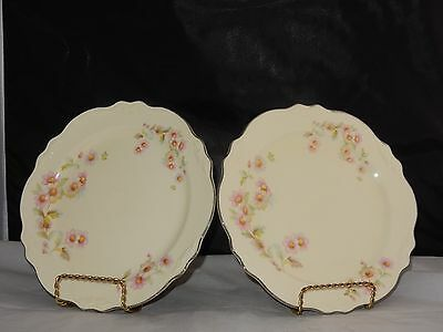 "Vintage Set Of 2 Homer Laughlin China Floral 9-3/8"" Dinner Plates"