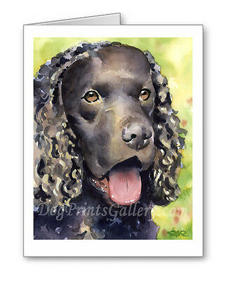 American Water Spaniel Set of 10 Note Cards With Envelopes