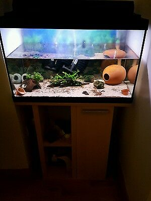 tropical fish tank on stand