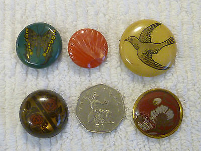 5 Very Nice Vintage Celluloid Tight And Bubble Buttons.