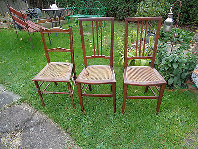 3 Mahogany Cane Seated Chairs, Edwardian