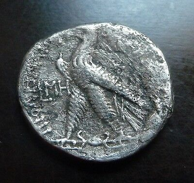 Ptolemy VIII Evergetes (Physcon) AR Tetradrachm Kition dated 123 BC Eagle