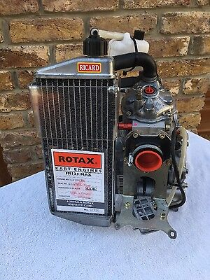 ROTAX MAX SENIOR GO KART ENGINE Tony kart Alonso kosmic otk crg birel