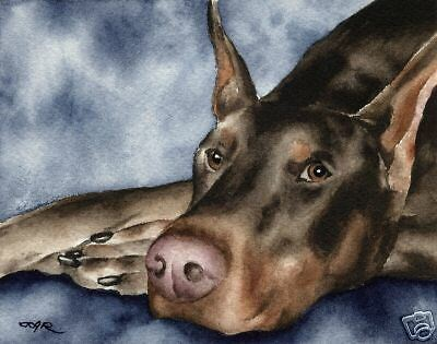 RED DOBERMAN Watercolor DOG 8 x 10 Art Print Signed by Artist DJR