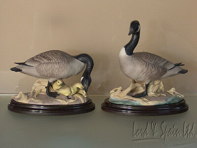 2 Boehm CANADA GEESE Male & Female With Goslings Figurines With Stands-#408