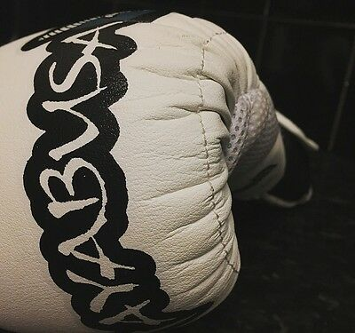Hayabusa Boxing Gloves 14oz