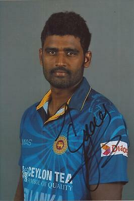 SRI LANKA * THISERA PERERA SIGNED 6x4 PORTRAIT PHOTO+COA