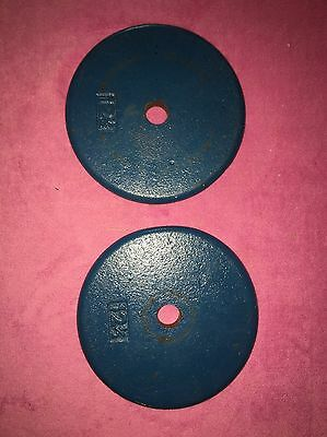 """12.5 Pound 1"""" Hole Weights Lot Of 2, 25 Total Pounds"""