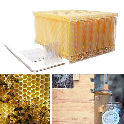 7Pcs 2016 New Upgraded Flow Hive Frames Beekeeping Tool For Harvesting Raw Honey