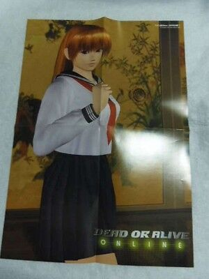 Dead or Alive Online Famitsu Xbox March issue Kasumi & Ayane Poster B3 size