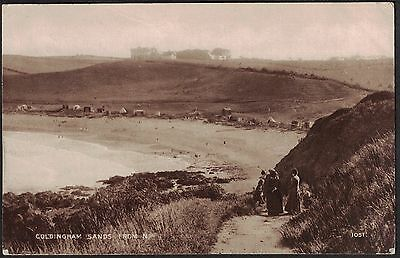 COLDINGHAM SANDS FROM THE NORTH nr. EYEMOUTH, BERWICKSHIRE, SCOTLAND.