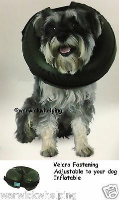 Comfy Collar inflatable Buster Thrive Medium Large X Large dog recovery surgery