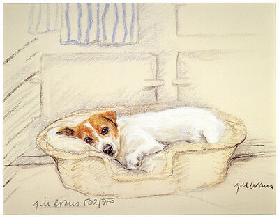JACK RUSSELL TERRIER DOG ART LIMITED EDITION PRINT - In Dog Basket Aga behind