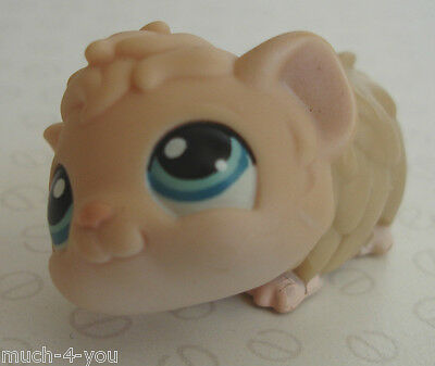 FLASH SALE Hasbro Littlest Pet Shop - Cream Guinea Pig with Turquoise Eyes #157
