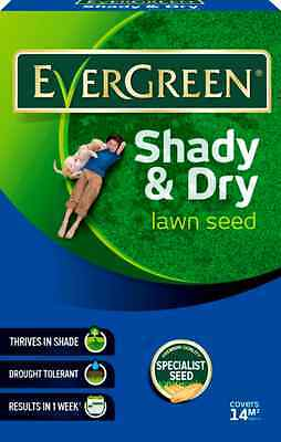 EverGreen Shady & Dry Lawn Grass Seed 420g Carton Covers 14m2