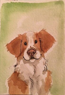 ACEO Brittany Dog Headshot. A Watercolor Original Art By NFISH