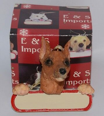 NEW E&S Imports MINIATURE PINSCHER with Box Ornament #ORN218-99