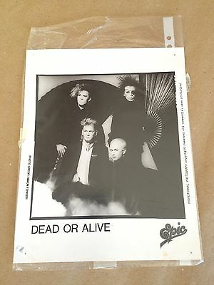 DEAD OR ALIVE Pete Burns - DOA Fan Club 1985 Official 8x10 promo photo #2