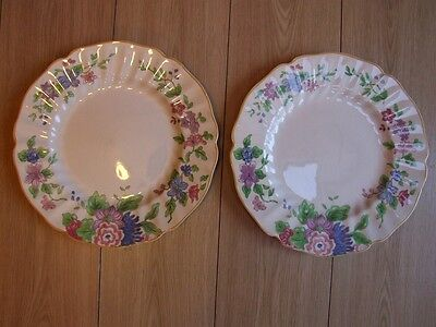 Pair of Vintage china Royal Doulton flower decorated plates