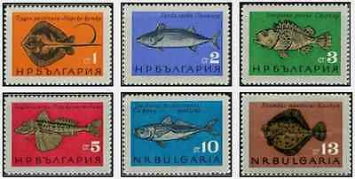 Timbres Poissons Bulgarie 1328/33 ** lot 18046