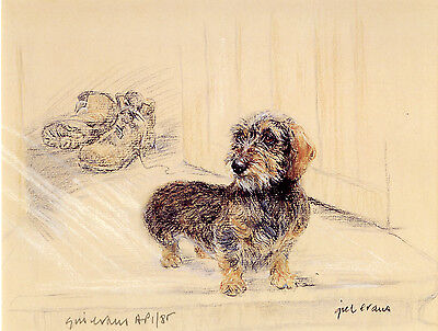 DACHSHUND MINI WIRE-HAIRED DOG LIMITED EDITION PRINT - Artists Proof # 23/85