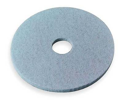 3M 3100 Burnishing Pad, 24 In, Aqua, PK 5