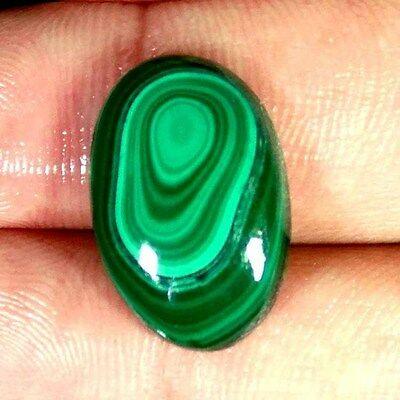 17.30Ct Natural Antique Designer Green Malachite Oval Cabochon Loose Gemstone