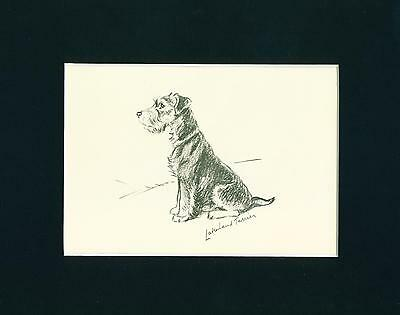 Dog Print 1937 Lakeland Terrier by Lucy Dawson VINTAGE