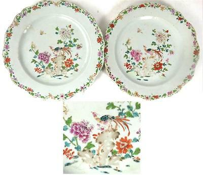 C1735-1796 Pair Antique Chinese Qinalong Famille Rose Plates Birds