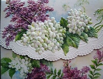 Carol Wilson Stationery 10 Note Cards Envelopes White Hydrangea Lilac Floral