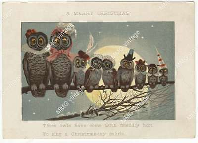 AKT-679 Greeting Card A Merry Christmas Those Owls Have come with Friendly Hoot