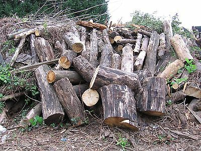 2 tons of firewood logs for wood burning stoves or open fires, delivered to