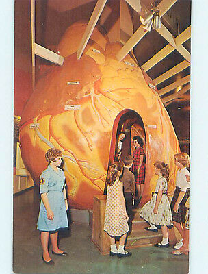 Unused Pre-1980 MUSEUM SCENE Chicago Illinois IL hr0347