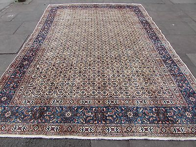 Old Hand Made Traditional Persian Rugs Oriental Wool Cream Blue Carpet 360x252cm