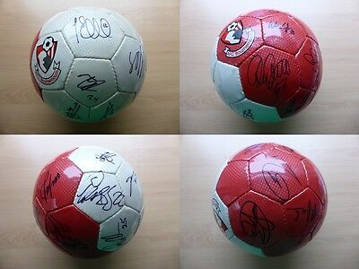 2012-13 Bournemouth Multi Signed Football Signed by 1st Team Squad (9658)