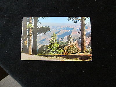 Arizona (Point Imperial)             Postcard  Grand Canyon