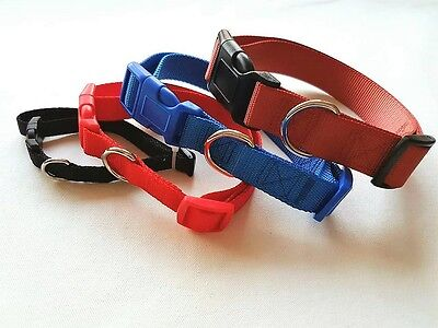 Adjustable Nylon Fabric Dog and Cat collars available 4 Sizes XS/S/M/L  jw-0407