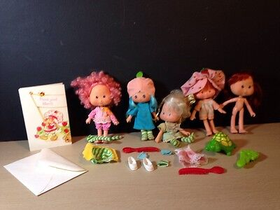 Strawberry Shortcake Lot Sweet Sleeper Blueberry Clothes Angel Tart Turtle Dolls