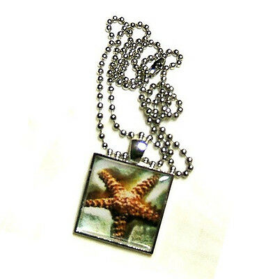 Starfish On A Tropical White Sand Beach Sea Life Pendant Necklace Hand Crafted