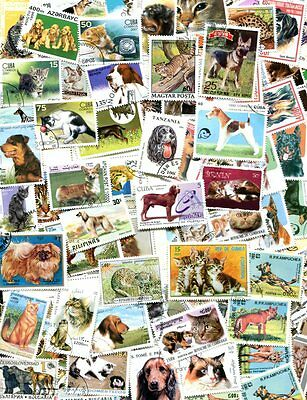 Fine Collection Of Cats And Dogs - All Different Postage Stamps!