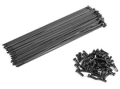 NEW Eclat Stainless Spokes (50 pack)