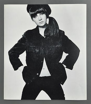David Bailey 1965 Box of Pin-ups Halftone Photo Print 32x37cm Chrissie Shrimpton