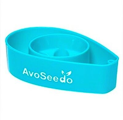 Grow your Own Avocado Tree �� with Avoseedo Blue Express Shipping Included