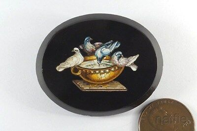 ANTIQUE VICTORIAN PERIOD PLINY'S DOVES MICRO MOSAIC BROOCH c1870